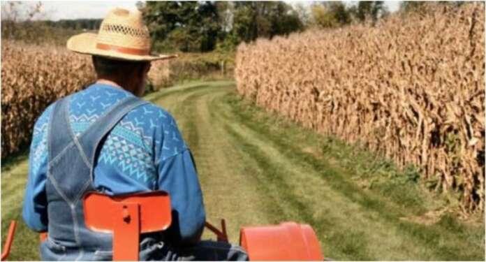 Genç Çiftçiye Destek