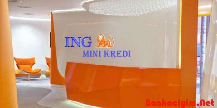 İng Bank Mini Kredi