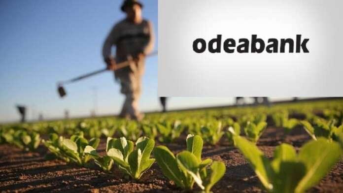 Yerel Üreticiye Bir Destek de Odea Bank'tan!