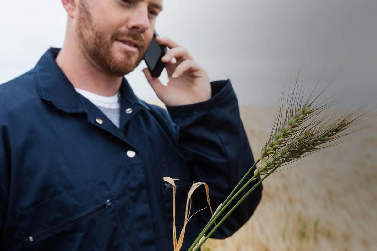 TEB Tarım Müşteri İlişkileri Yönetici Yardımcısı Alımları